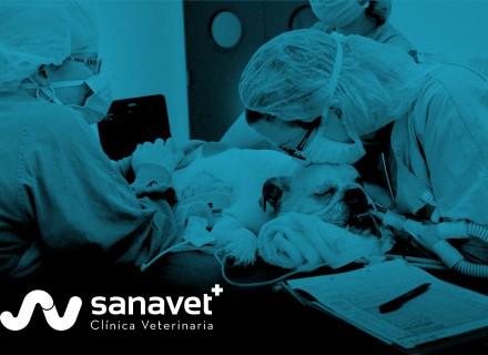 CirugiaSanavet